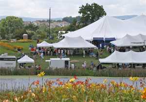 Looking from the farm to the festival site.