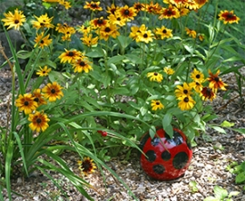 An old bowling ball becomes a cute ladybug to brighten the garden!