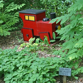 """Dad built this bright red train with square wheels for Leslie's """"Island of Misfit Toys"""" garden."""