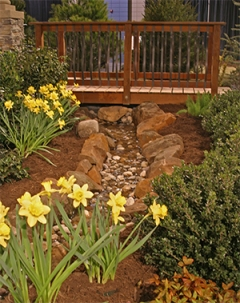 A gurgling stream is flanked by mulched beds of spring bulbs and boxwood. A beautiful bridge leads to other areas of the garden.