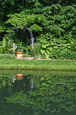 A sunny area around the pond is planted with Telekia, Rudbeckia, and Geraniums