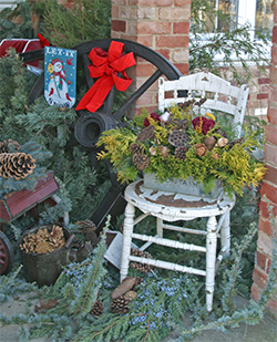 "A mix of ""greens"" adds color and texture to a beautiful holiday display."