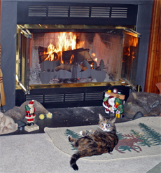 A cozy fire is so pleasant on a winter's evening