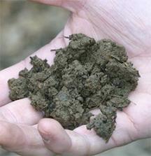 This garden soil has better organic content.