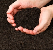"Blue Ridge Organics ""Super Compost"" adds rich organic matter to the soil."