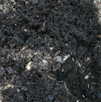 Good rich soil provides the perfect growing environment for your plants