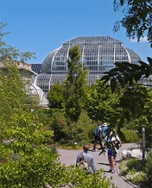 The Conservatory dome houses the jungle room