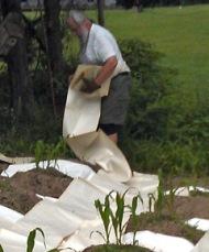 Computer paper mulch