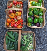 A bountiful harvest depends on building and maintaining proper soil nutrients.